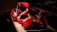 Tango Dancing Shoes by Medellin Specialist D'Raso