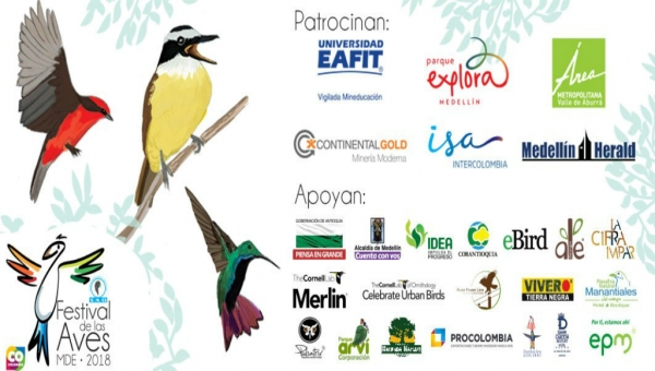 5th Annual Medellin Bird Festival October 3-8, 2018
